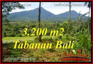 TANAH di TABANAN BALI DIJUAL Untuk INVESTASI TJTB319