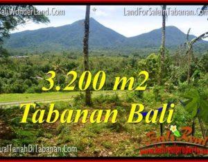 TANAH JUAL MURAH  TABANAN BALI 32 Are View gunung dan sawah