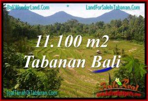JUAL MURAH TANAH di TABANAN 11,100 m2  View gunung dan sawah