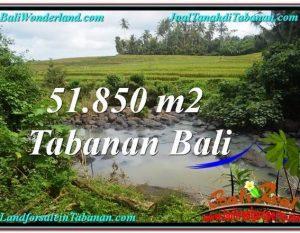 TANAH DIJUAL MURAH di TABANAN Untuk INVESTASI TJTB289