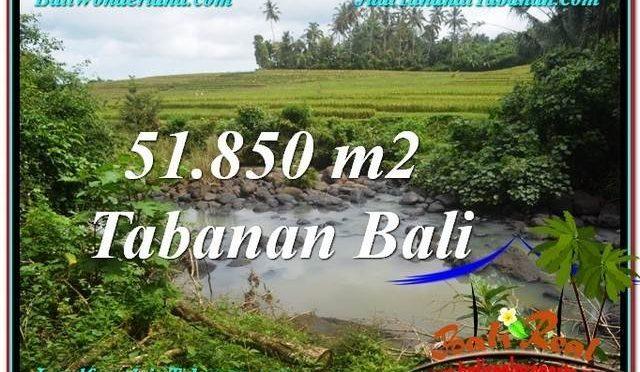 JUAL TANAH MURAH di TABANAN 518.5 Are di Tabanan Selemadeg