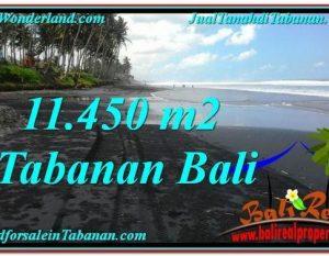 JUAL TANAH MURAH di TABANAN 114.5 Are di Tabanan Kerambitan