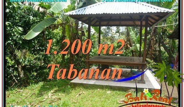 JUAL TANAH MURAH di TABANAN 1,200 m2 View kebun dan sungai