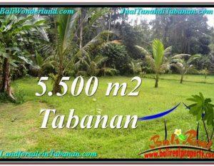 JUAL TANAH MURAH di TABANAN BALI TJTB295