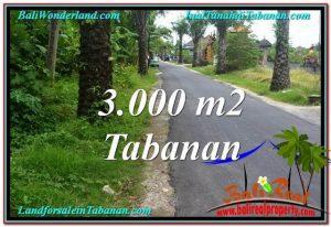 TANAH DIJUAL MURAH di TABANAN TJTB297