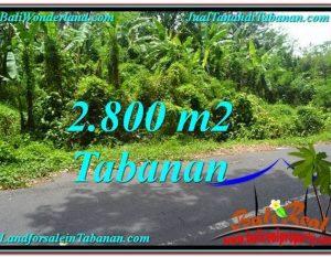 JUAL TANAH di TABANAN 2,800 m2  View kebun