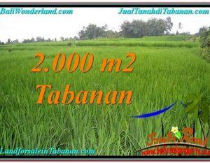 JUAL TANAH MURAH di TABANAN BALI TJTB303