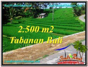 TANAH MURAH DIJUAL di TABANAN BALI 25 Are di Tabanan Penebel