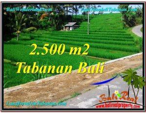 TANAH di TABANAN BALI DIJUAL MURAH Untuk INVESTASI TJTB305