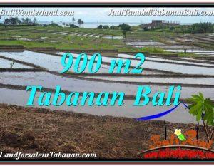 JUAL TANAH MURAH di TABANAN BALI 9 Are View Laut, Gunung dan sawah