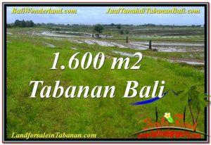 JUAL MURAH TANAH di TABANAN BALI TJTB310