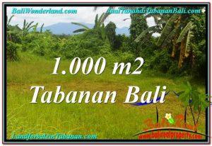 DIJUAL MURAH TANAH di TABANAN BALI 10 Are di Tabanan Selemadeg