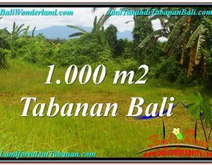 JUAL TANAH MURAH di TABANAN Untuk INVESTASI TJTB311