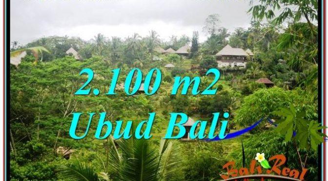 TANAH di TABANAN BALI DIJUAL MURAH Untuk INVESTASI TJTB302
