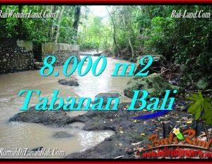 TANAH di TABANAN DIJUAL MURAH 8,000 m2 di Tabanan Selemadeg