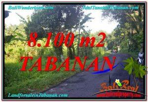 JUAL MURAH TANAH di TABANAN 8,100 m2 View Kebun