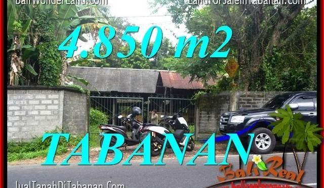 TANAH MURAH di TABANAN DIJUAL 48.5 Are di Tabanan Bedugul