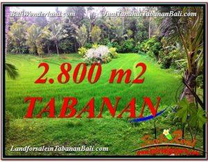 JUAL TANAH di TABANAN BALI 2,800 m2  View  sawah
