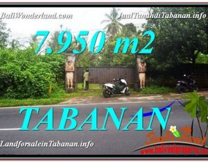DIJUAL TANAH di TABANAN 7,950 m2 di Tabanan Bedugul