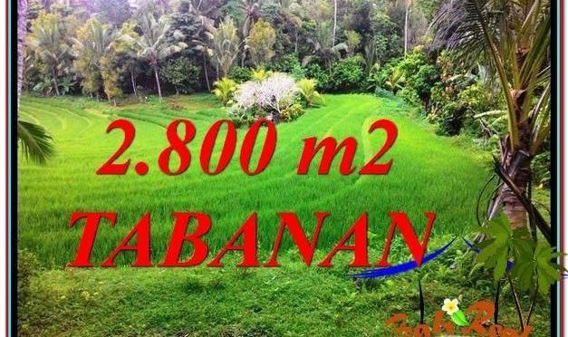 TANAH DIJUAL di TABANAN BALI 28 Are View sawah