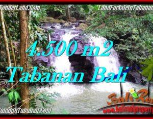 JUAL TANAH di TABANAN BALI 45 Are di Tabanan Selemadeg