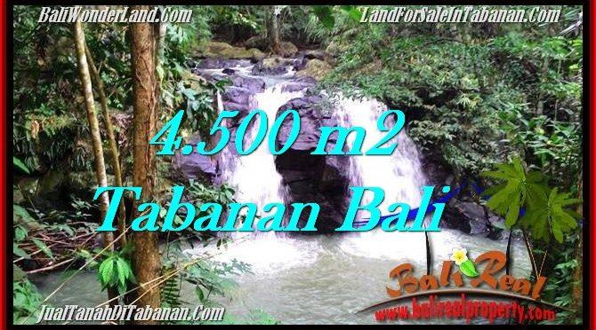 TANAH MURAH DIJUAL di TABANAN BALI 4,500 m2 di Tabanan Selemadeg