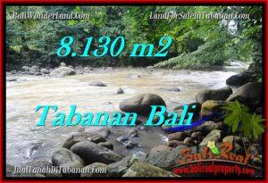 JUAL TANAH di TABANAN BALI 81.3 Are View sawah, sungai dan gunung