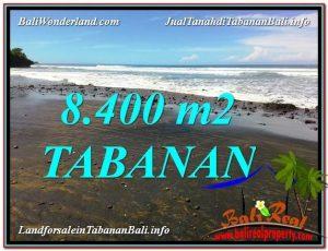 JUAL TANAH MURAH di TABANAN 8,400 m2 di Tabanan Selemadeg