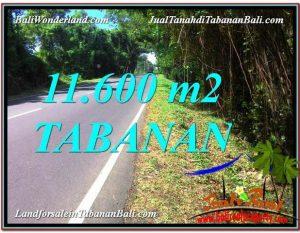JUAL TANAH di TABANAN BALI 11,600 m2  View laut dan Lingkungan Villa