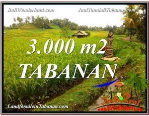 TANAH MURAH DIJUAL di TABANAN Untuk INVESTASI TJTB328