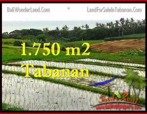 TANAH di TABANAN JUAL MURAH 17.75 Are View Laut, Sawah dan Gunung