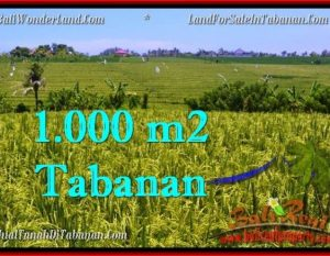 TANAH di TABANAN BALI DIJUAL MURAH 1,000 m2 di Tabanan Selemadeg