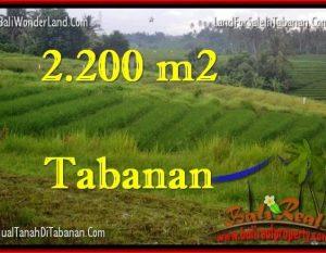 TANAH MURAH JUAL di TABANAN BALI 2,200 m2  View Laut dan sawah