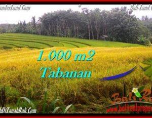 TANAH di TABANAN JUAL MURAH 10 Are View sawah dan laut