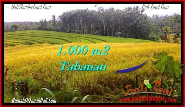 DIJUAL TANAH di TABANAN Untuk INVESTASI TJTB273