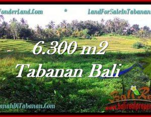 DIJUAL TANAH di TABANAN 6,300 m2 di Tabanan Selemadeg