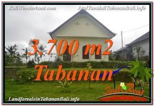 TANAH MURAH JUAL di TABANAN BALI 37 Are View Kebun