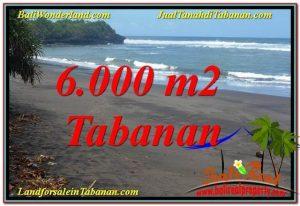 INVESTASI PROPERTI, TANAH DIJUAL di TABANAN BALI TJTB345