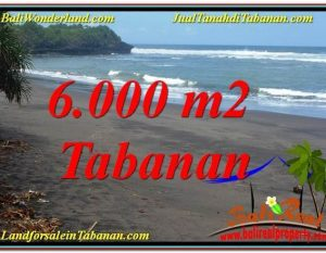 JUAL TANAH MURAH di TABANAN BALI 60 Are View laut dan sawah
