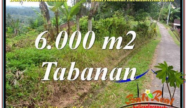 TANAH MURAH di TABANAN BALI DIJUAL Untuk INVESTASI TJTB349