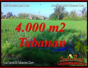 TANAH di TABANAN JUAL MURAH 4,000 m2  View sawah