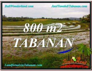 TANAH JUAL MURAH  TABANAN BALI 8 Are View laut dan sawah