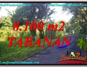 JUAL TANAH di TABANAN 8,100 m2 di Tabanan Marga
