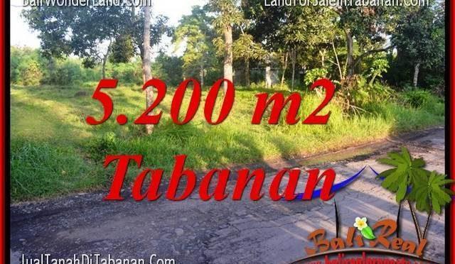 JUAL TANAH di TABANAN 52 Are View Kebun dan Sungai