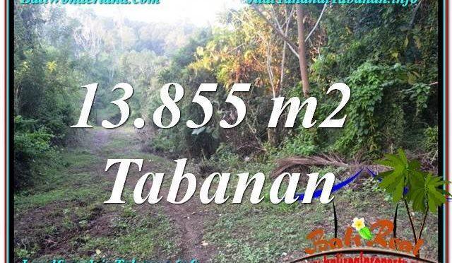 JUAL TANAH MURAH di TABANAN BALI 138.55 Are View Kebun dan Sungai