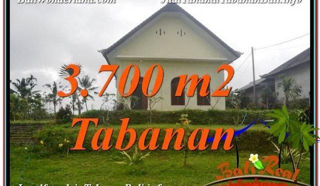 JUAL TANAH MURAH di TABANAN BALI TJTB336