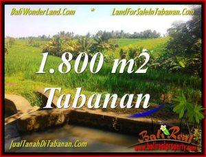 DIJUAL MURAH TANAH di TABANAN BALI Untuk INVESTASI TJTB338