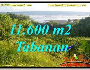 TANAH MURAH di TABANAN DIJUAL 116 Are di Tabanan Selemadeg