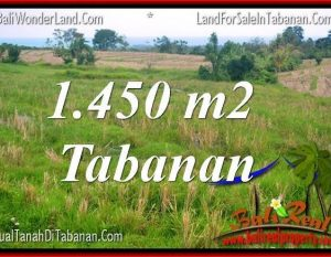 TANAH MURAH DIJUAL di TABANAN BALI TJTB343