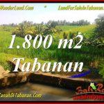 DIJUAL MURAH TANAH di TABANAN Untuk INVESTASI TJTB338